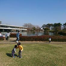 鯉が沢山いる池と展望台のある公園