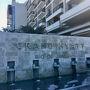 リオデジャネイロ バハビーチが目の前に広がる素敵なリゾートホテル 『Grand Hyatt Rio de Janeiro』