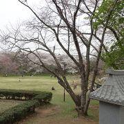 佐倉市屈指の観光スポット!