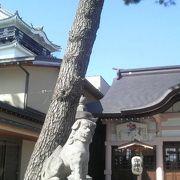 岡崎城天守閣のすぐ隣、家康ゆかりの神社です