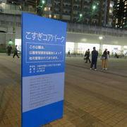 東急武蔵小杉駅前です