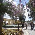 アッパーバラッカ ガーデン