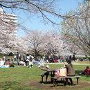 新横浜駅前公園
