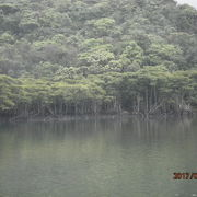 沖縄最大の河川