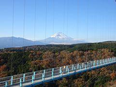 静岡のツアー