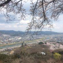 「船岡城址公園」の頂上、「平和観音」様の近くから眺めてきました