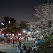 浅草の夜の良さがまた再認識されると思います