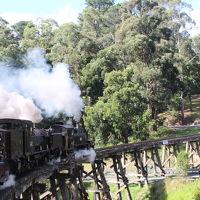 パフィンビリー蒸気機関車ツアー