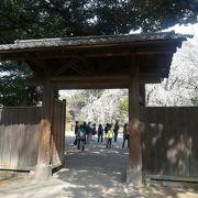 しだれ桜前の門です