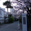 写真:鎌倉教会