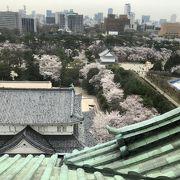 桜の時期は大混雑!