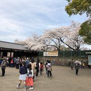 名古屋城のエントランス