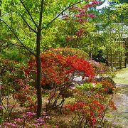 『葉山しおさい庭園』