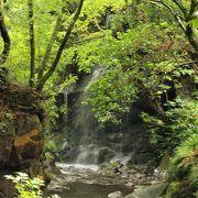 渓流沿いの野趣豊かな公園です。