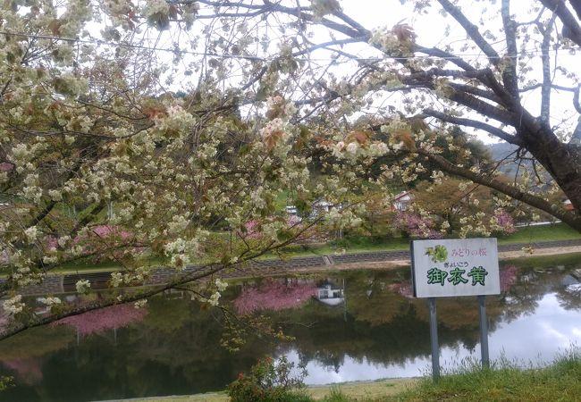 三刀屋川河川敷公園