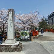 満開の桜が参拝者を迎えてくれた