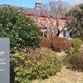写真:旧東京医学校本館