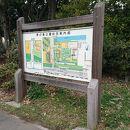 都立夢の島公園