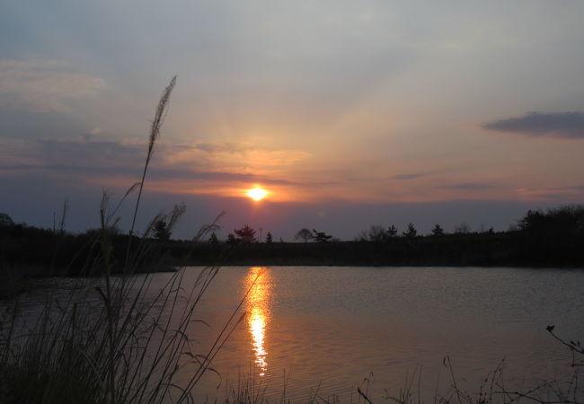 ひょうたん沼公園