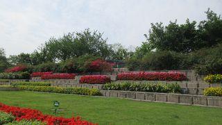 成都 人民公園