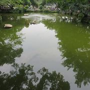 瓢箪形の池には・・・