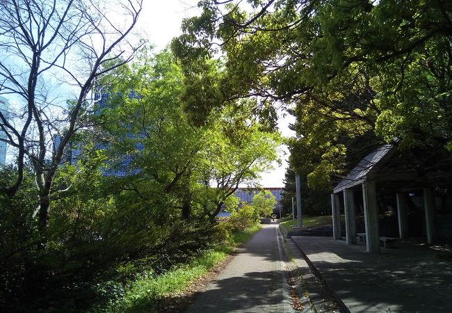 浜田川沿い
