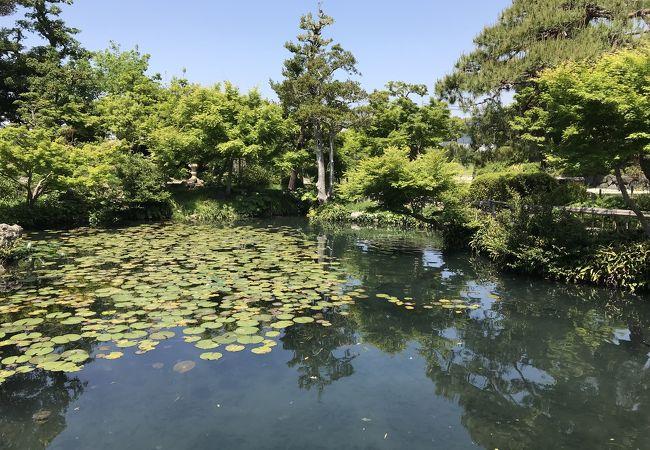 清水邸庭園:無料公開