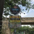 写真:金井山城