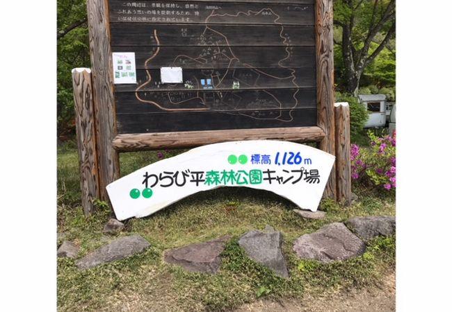 初キャンプ わらび平キャンプ場