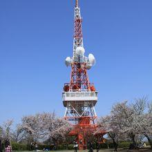 小さな東京タワー?