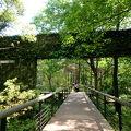 写真:記念の森レストハウス