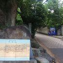 天王山 (山崎城跡)