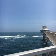 海中展望塔で自然の魚と出会う
