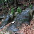 写真:市ケ尾横穴古墳群