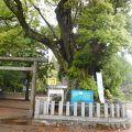 熊野古道スタンプあります