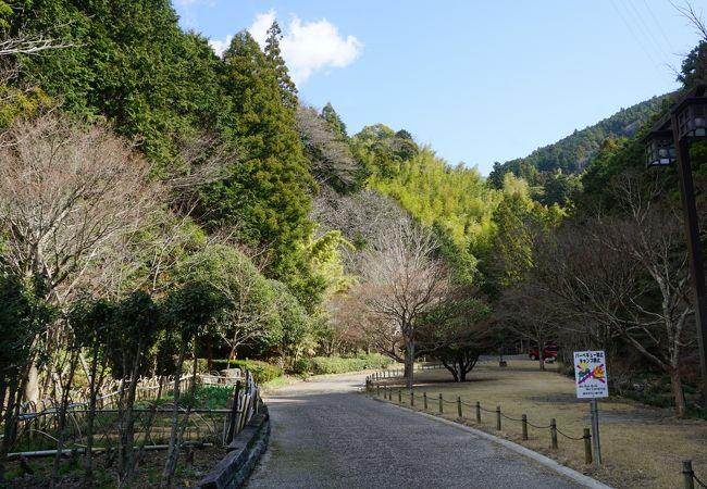 つたの細道公園
