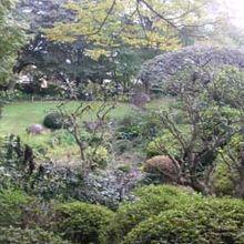 斜面の庭園