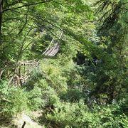 祖谷のかずら橋から約1時間で更に秘境感がありました