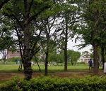 都立 尾久の原公園
