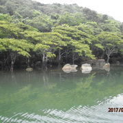 西表島を流れる大きな川