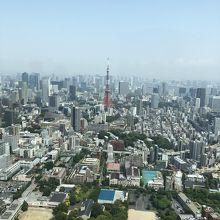 東京タワーの見える景色