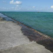 黒島の桟橋・満潮時には隠れそうになります