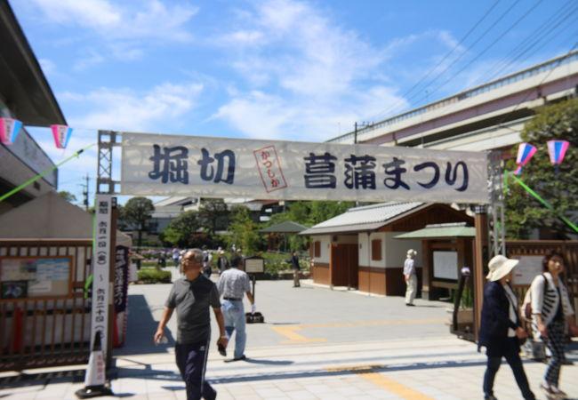 堀切菖蒲園と水元公園で開催します
