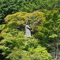 写真:板垣退助銅像