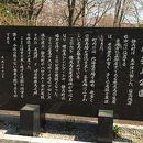 桜舞馬公園