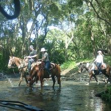 川を渡る乗馬ツアー