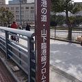 象の鼻パーク~大桟橋