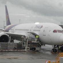 タイ航空787-8です。