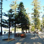 静かなSouth Steyne Beachはお隣です
