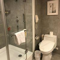 客室とトイレ洗面所は一部ガラスで仕切られています。